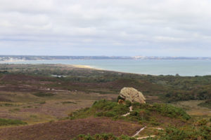Path leading to the Agglestone in Studland