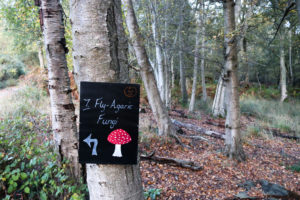 Toadstool sign at Arne's halloween nature trail