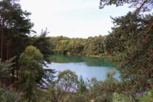 Blue Pool through pine trees