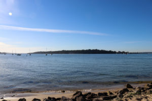 Brownsea Island viewed from Shell Bay