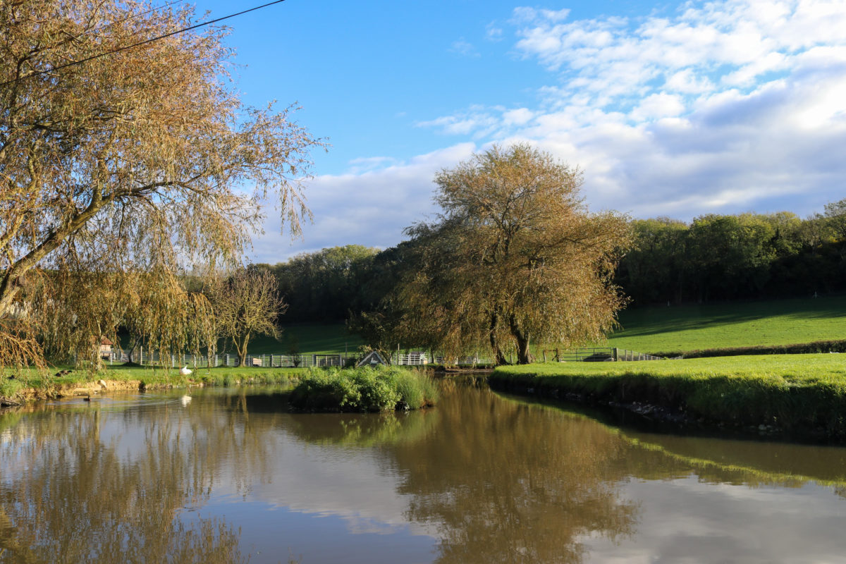 The duckpond in East Creech village