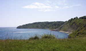 Durlston Bay with cliff fall