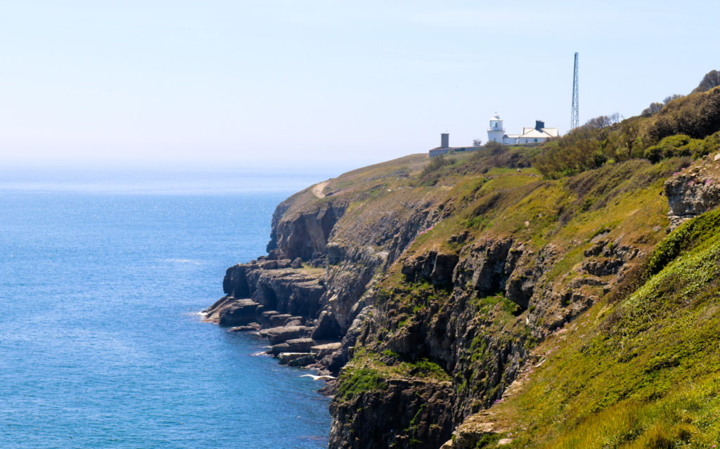Headland at Durlston with lighthouse