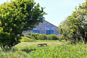 Durlston learning centre through trees
