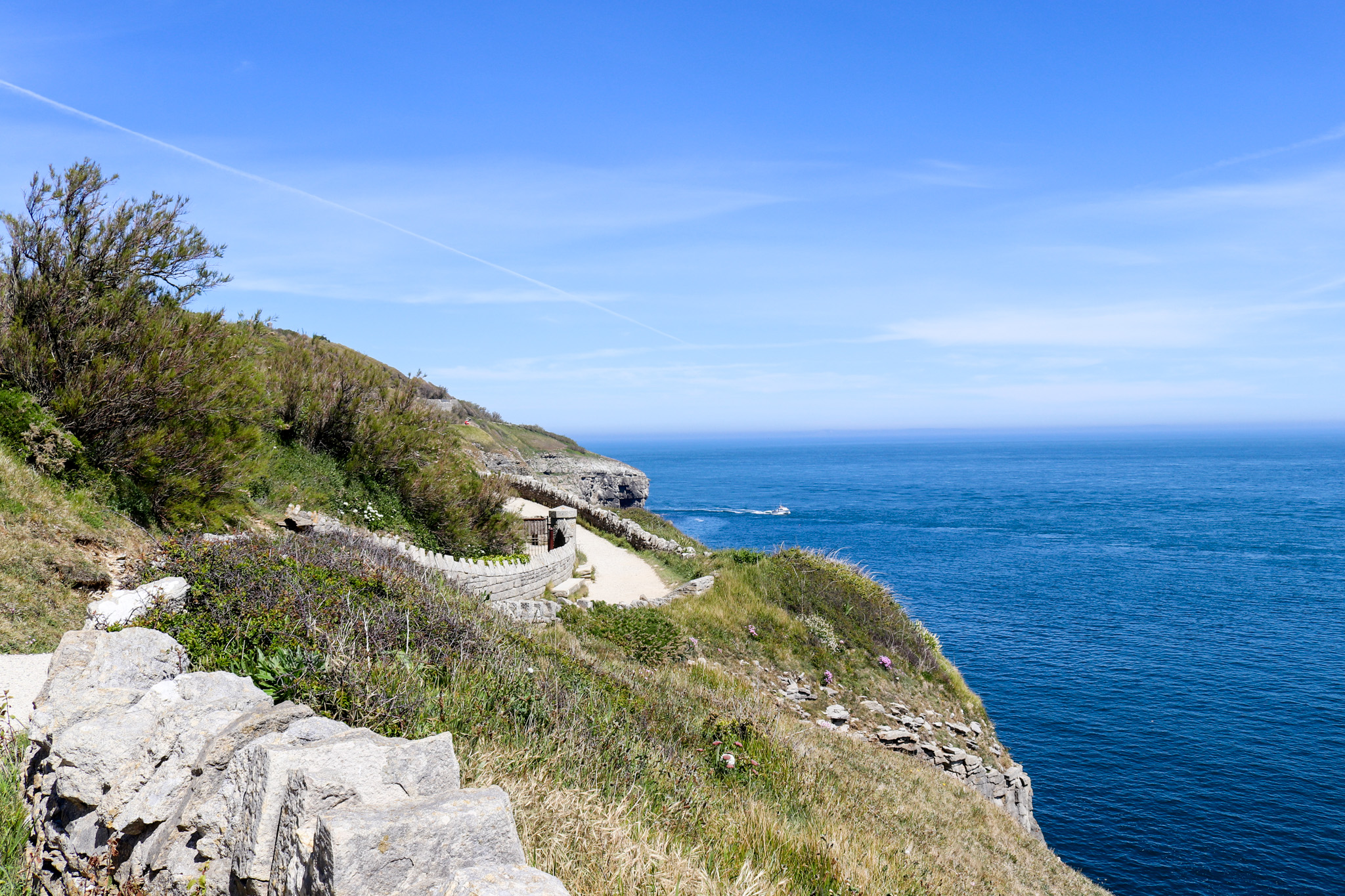 Coast path at Durlston Country Park in Swanage