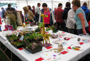 Flower and craft stall in tent of Harman's Cross village fayre