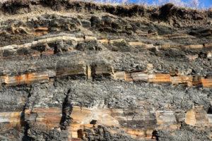 layers of Kimmeridge Clay at Kimmeridge Bay