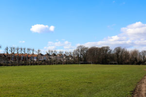 King George's playing field goalposts