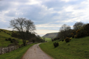 Track leading from South Street in Kingston to Chapman's Pool