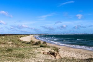 grass, dunes and beach at Knoll Beach, Studland