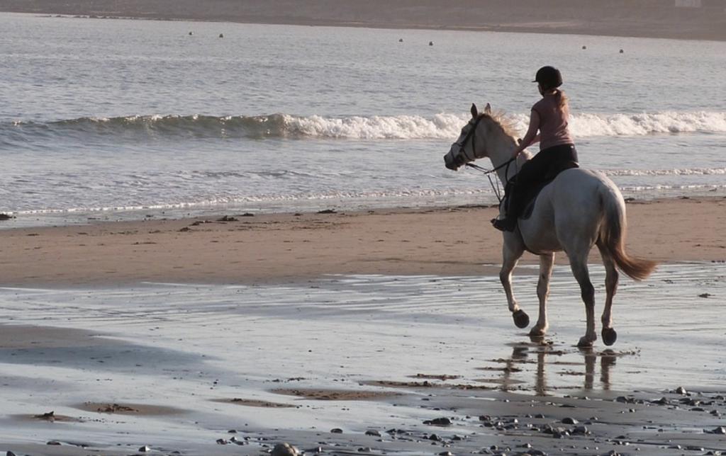 Horse rider on beach