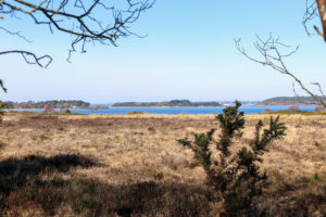 View across to Poole Harbour from Ferry Road, Studland