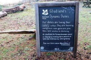 Blackboard of information about Studland's dynamic sand dunes