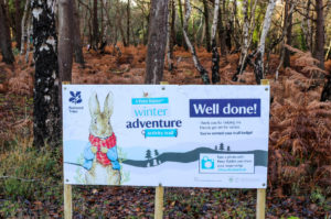 National Trust Peter Rabbit-themed information board at Knoll Beach