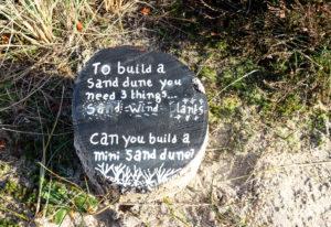 Educational sand dune task at Knoll Beach in Studland