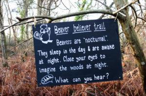 Studland knoll beach woodland walk beaver trail sign