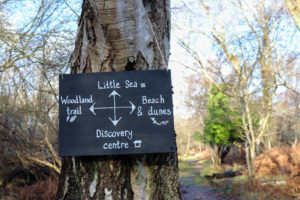 sign for little sea at Studland's woodland walk
