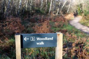 Woodland walk sign at Studland's Knoll Beach