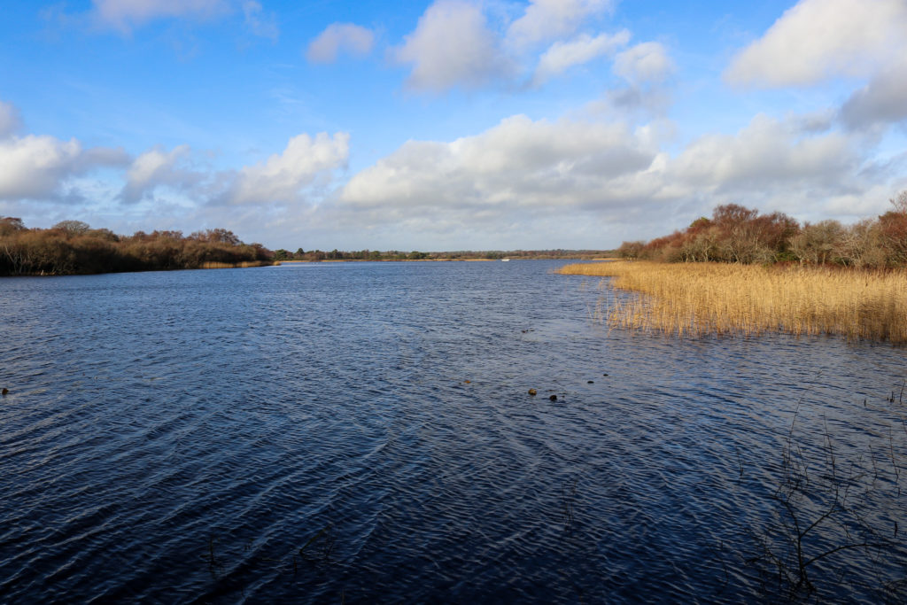 Little Sea freshwater lake in Studland from bird hide