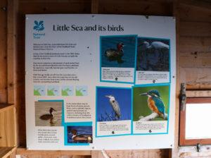 Studland's Little Sea bird-spotting information board in a bird hide