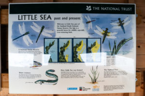 Information board explaining the history of coastal change at Little Sea in Studland