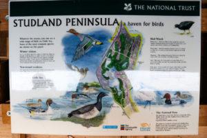 Bird information board at Studland's Little Sea