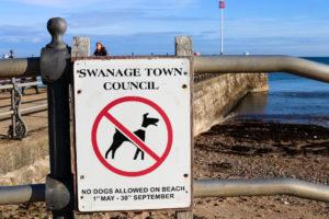 Seasonal no dogs on Swanage Beach sign