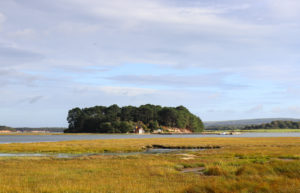 View across Pool Harbour to island from Arne's Shipstal Beach
