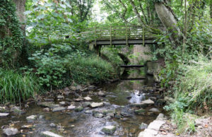 Stepping stones and bridge over Corfe River