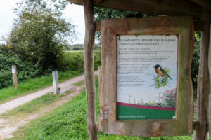 Stoborough Heath nature reserve poster with picture of bird