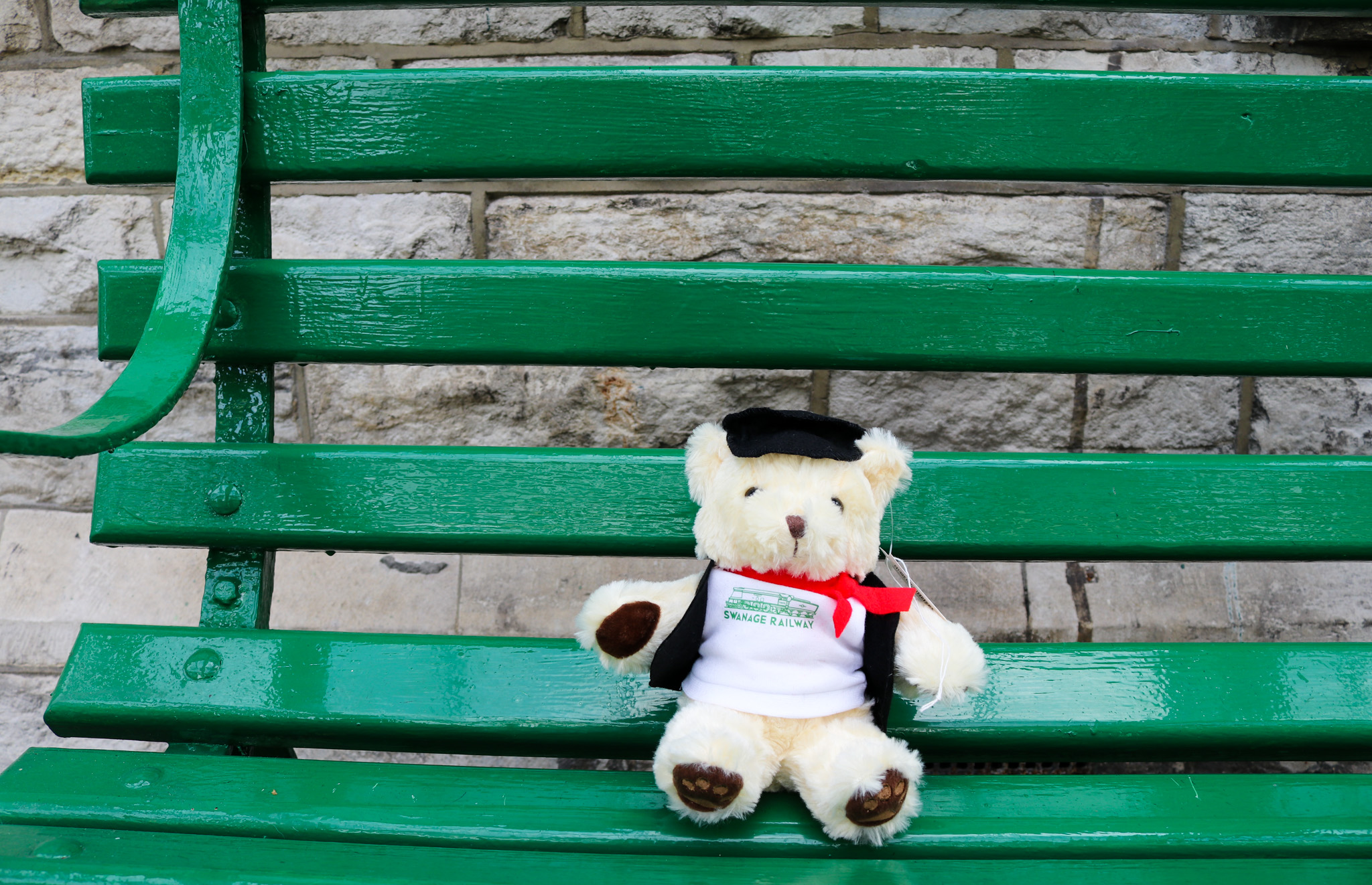 Swanage railway teddy bear sitting on bench