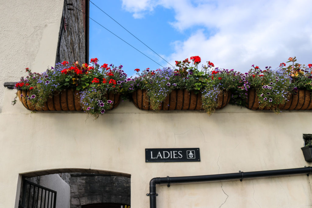 Ladies toilet sign and hanging baskets on Wareham quay