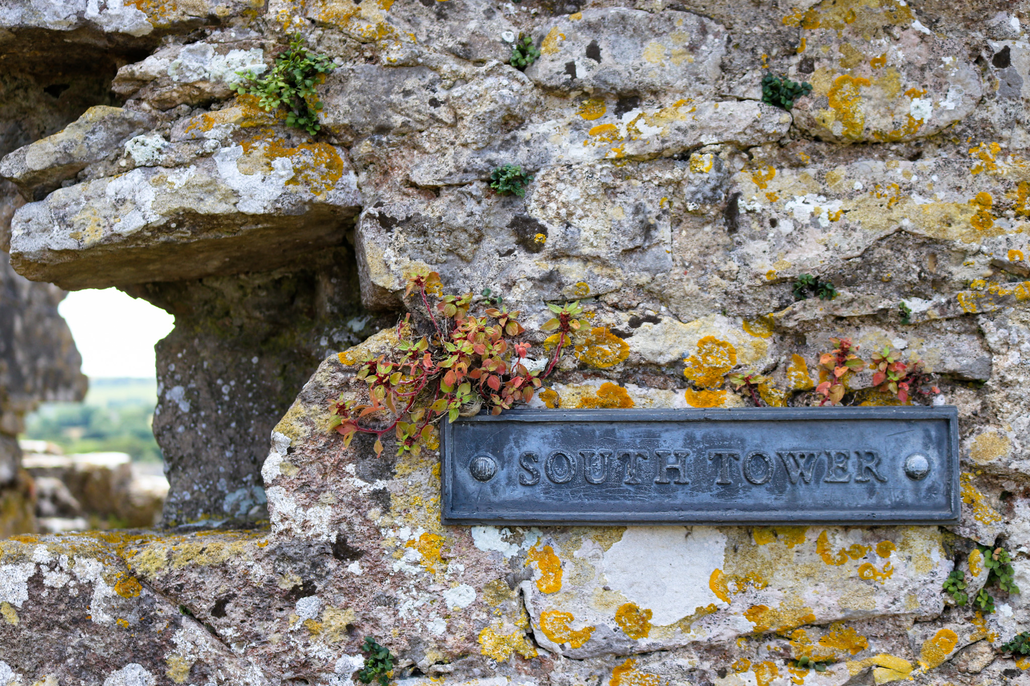 South Tower sign on wall at Corfe Castle