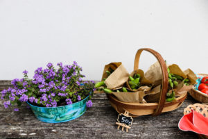 Flowers and peas in a basket