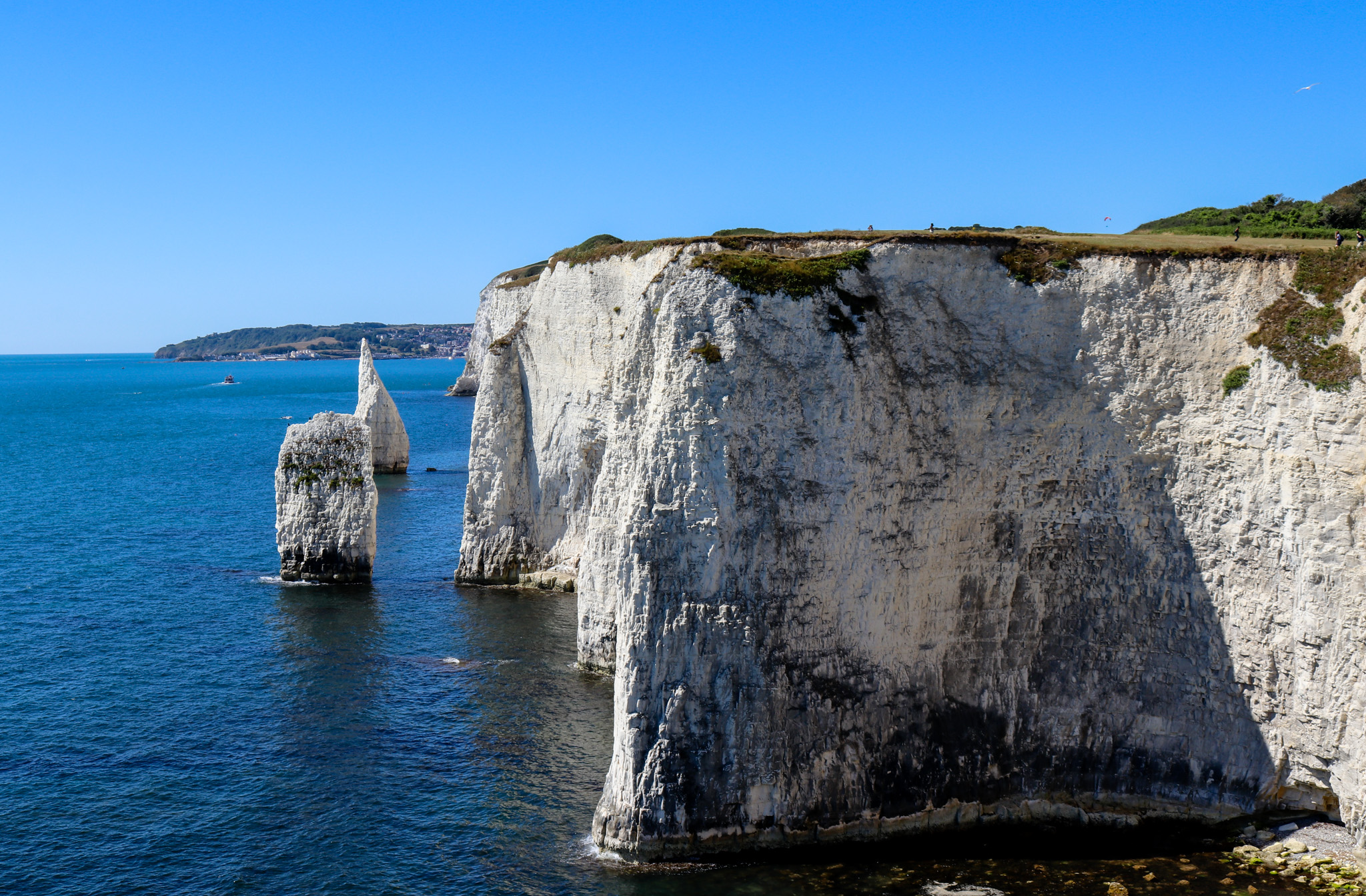 Chalk stacks The Pinnacles in Studland