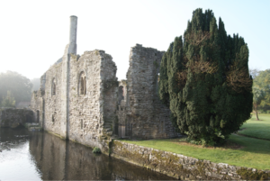 Christchurch Castle with large tree in front