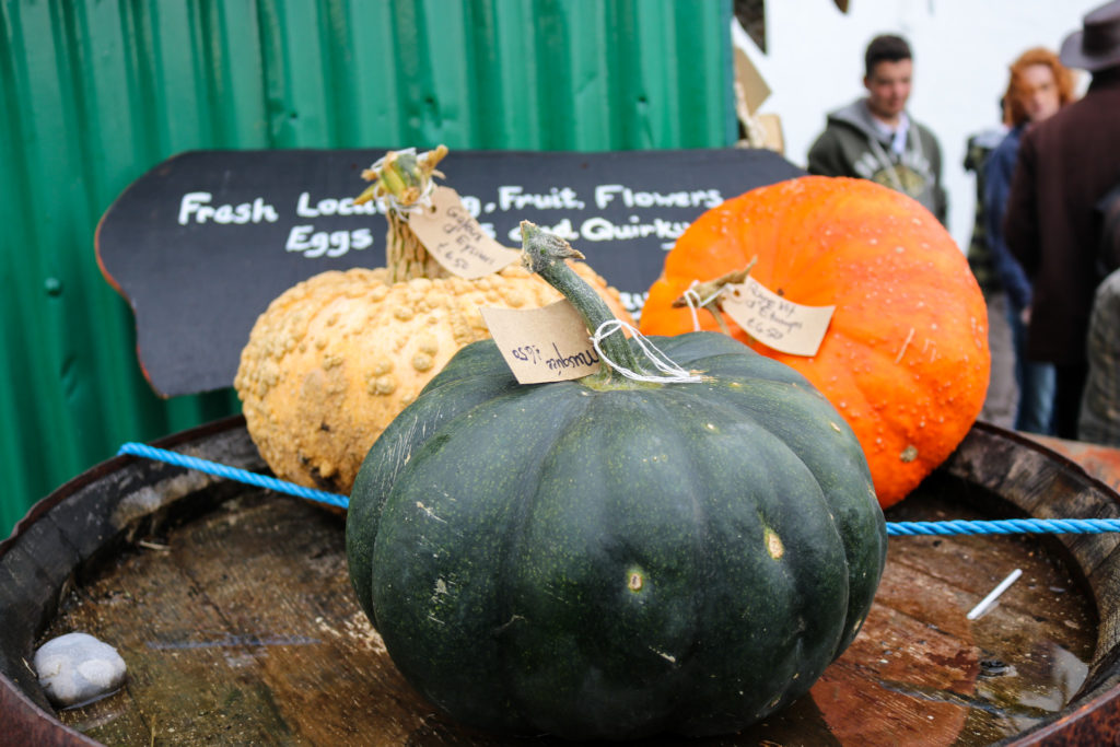 Pumpkin varieties at the pumpkin festival in Worth Matravers