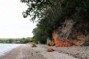 Colourful cliff face and trees at South Beach Studland