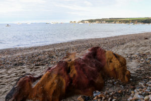 Red and yellow sandstone rock on South Beach Studland