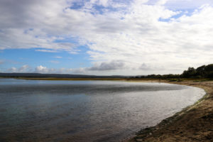 People standing at Shipstal Beach at Arne