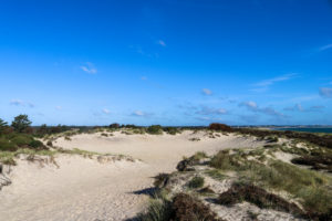 The 'crater' in the dunes at Knoll Beach in Studland