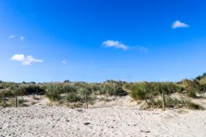 Sand, grass and sky at Studland's Knoll Beach