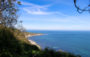 Durlston Bay and sea viewed from a woodland trail at Durlston Country Park