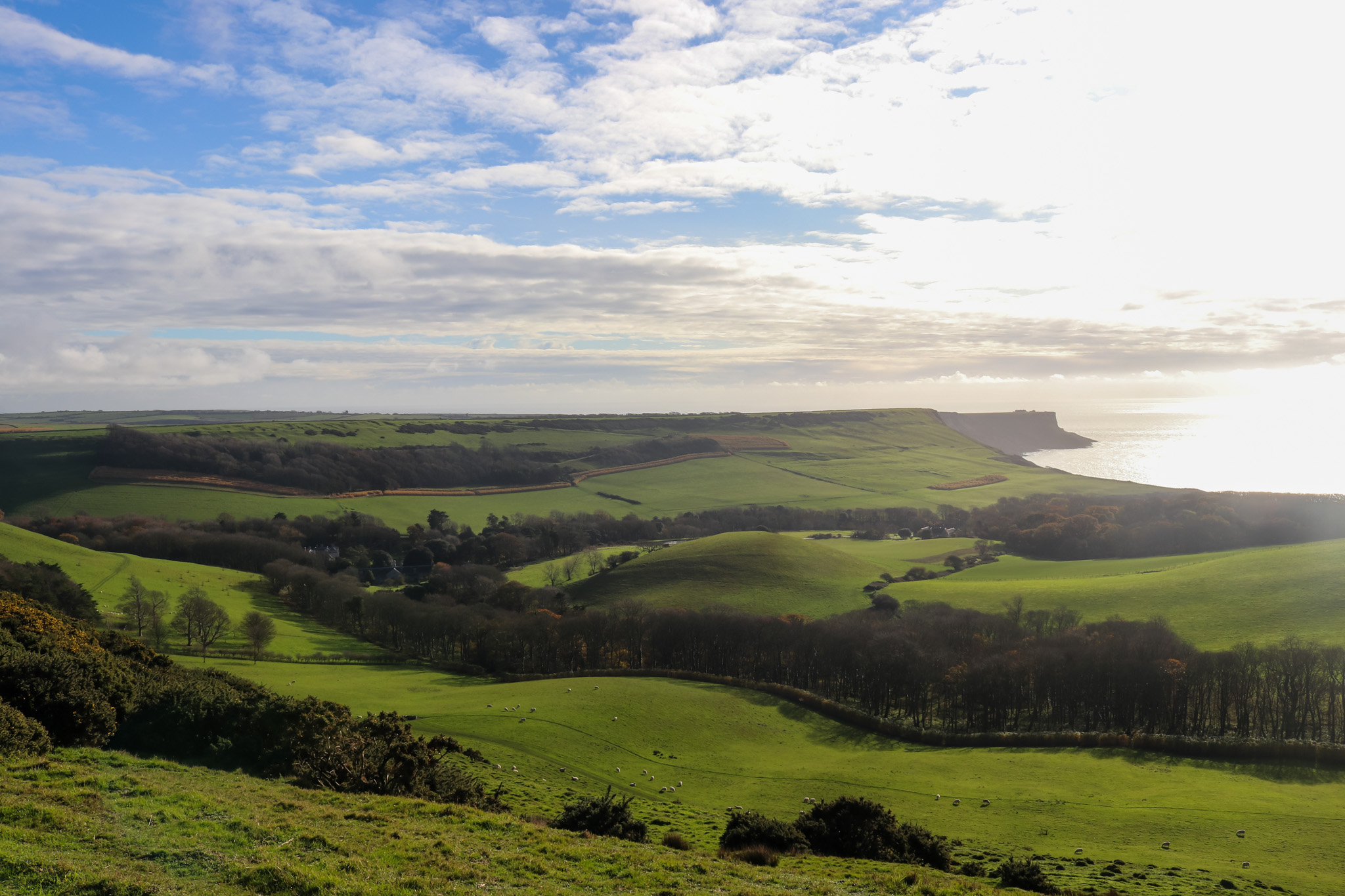 View across encombe estate from swyre head walk
