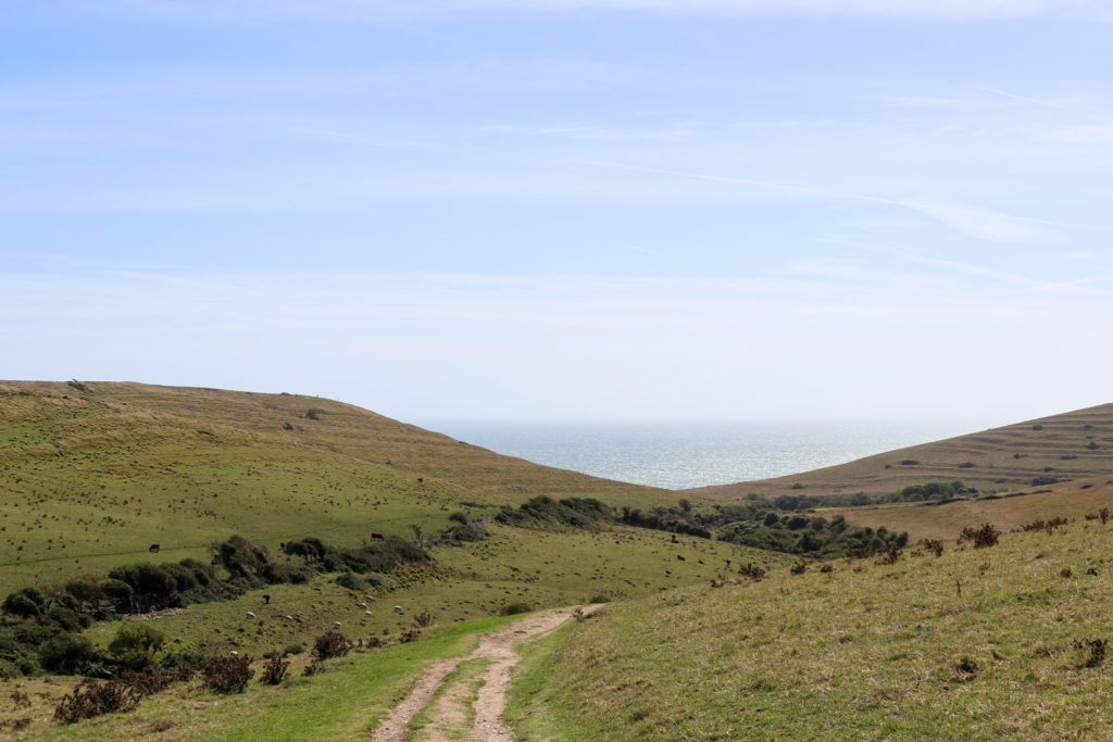 Footpath through valley from Worth Matravers down to Winspit