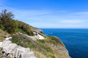 Part of the cliff walk path at Durlston, near to the Tilly Whim caves entrance
