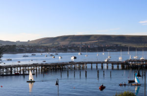 Swanage Pier and Purbeck Hills