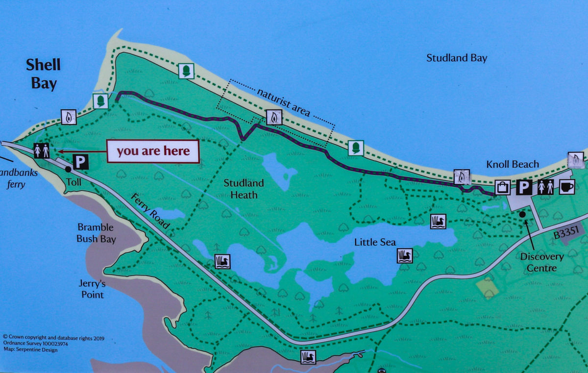 Map showing location of the naturist area in Studland Bay