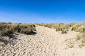 Sand dunes and blue sky at Studland Naturist beach