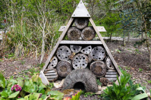 Insect 'hotel' in the garden of the café at Arne